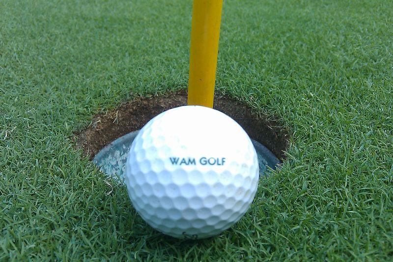 WAMGolfball